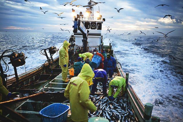 持ち込んだ魚も調理する秀丸